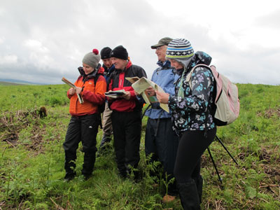group map reading in wicklow