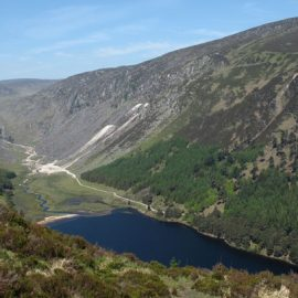 Loopy on The Spink, Co Wicklow